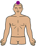 crown chakra position on the body