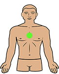 heart chakra position on the body