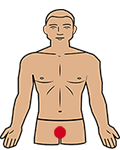 root chakra position on the body