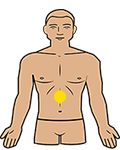 solar plexus charkra position on the body