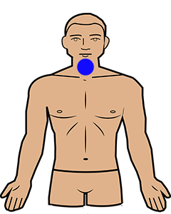 throat chakra position on the body